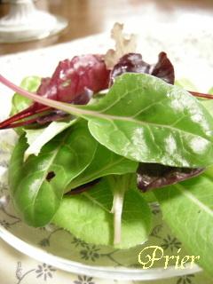 種から育てるハーブ・サラダ