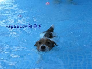 シュウト初泳ぎ01