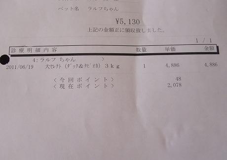 2011-06-29-11.jpg