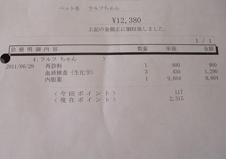 2011-06-29-12.jpg
