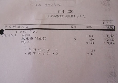 2011-07-13-08.jpg