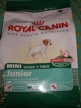 dog food2
