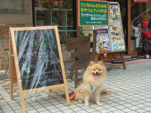 【Deco's Dog Cafe】