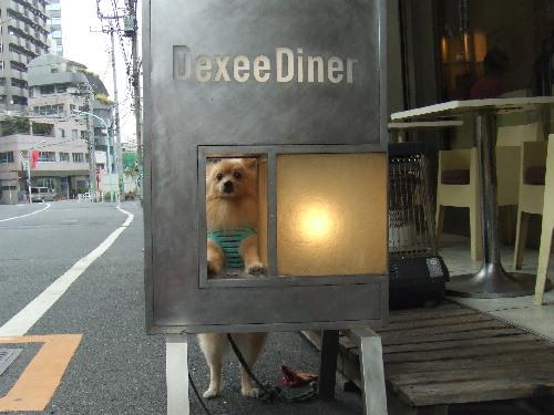 【Dexee Diner】