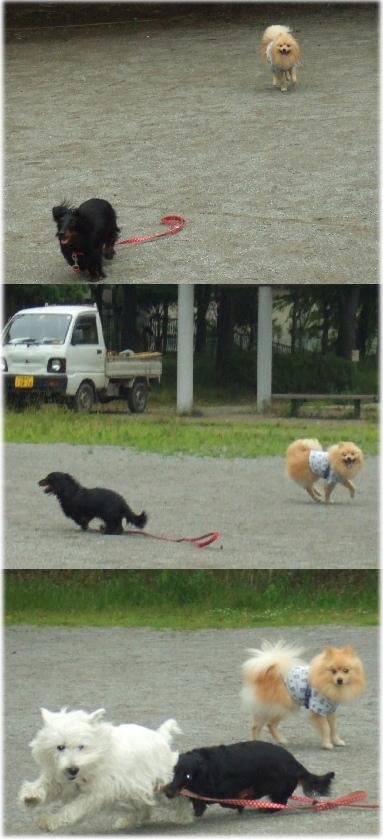 走る・遊ぶ♪2