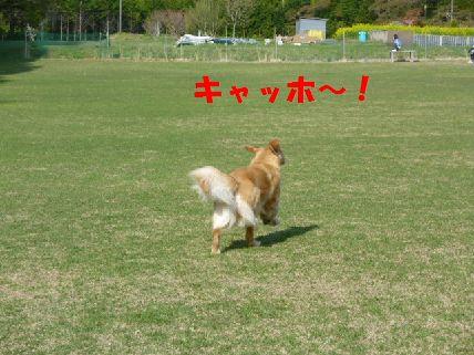b_20110430091502.jpg