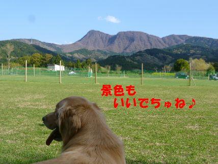 g_20110430091535.jpg