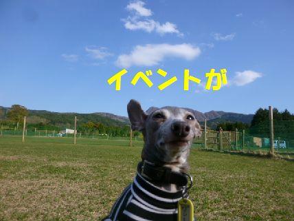 i_20110430091534.jpg