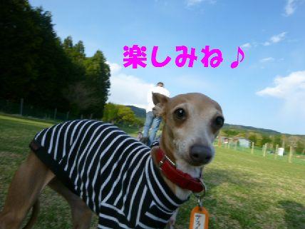 j_20110430091534.jpg