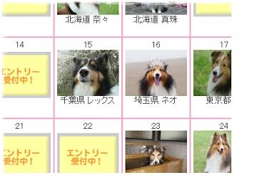 365カレンダー2012cs