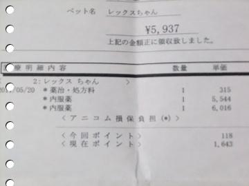 DSCF4411s.jpg