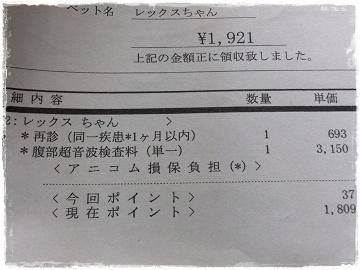 DSCF5234s.jpg
