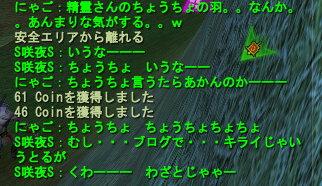 20070506124630.jpg