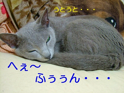 2007072405