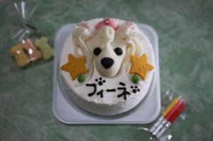 フィーネ_3_Birthday_2