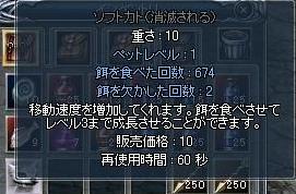 20061113164546.jpg
