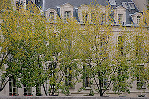 パリの秋5