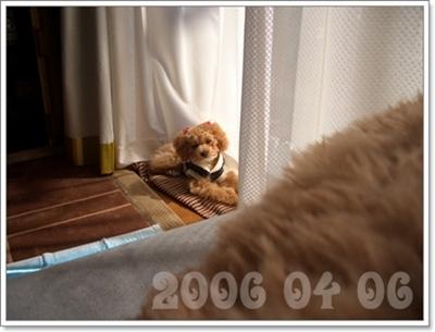 20071101220820.jpg