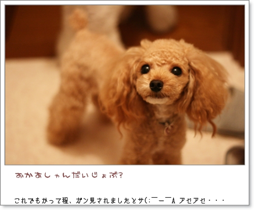 IMG_09194.jpg