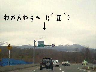 taru4.jpg