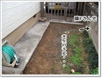 庭の改造10