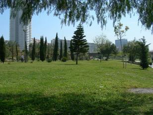 riosanpo20110404