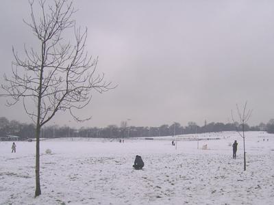 snowheath.jpg