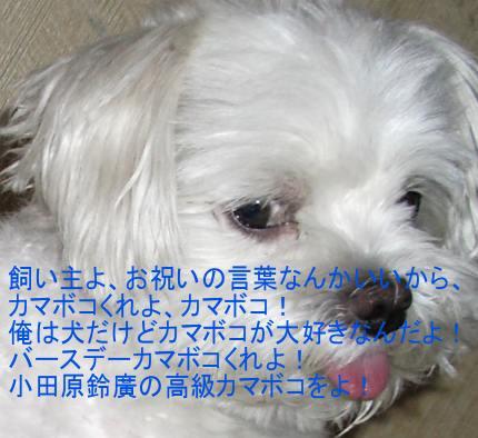 20070702011329.jpg