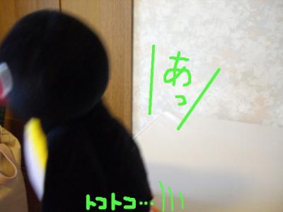 20070601094837.jpg