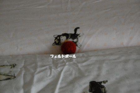 20110529kotetsu2.jpg
