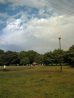 さわやかユーカリ広場