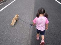 散歩に行こう