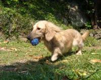 私はボールを持って♪