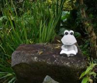庭の蛙です  勉強中