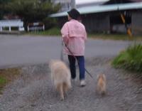 さあ お散歩に行くぞー!!