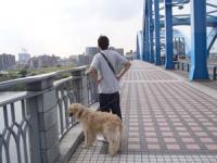 さて 橋を渡るか