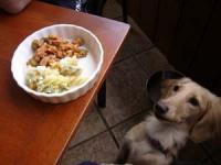 うわー 食べたい! もらえるんだよね
