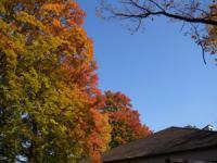 ゆっくりと 秋へ