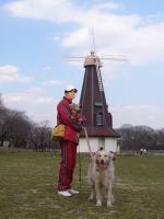 風車がありました
