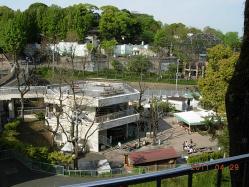 動物園の景色