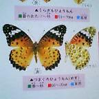 20060510_1634_000.jpg