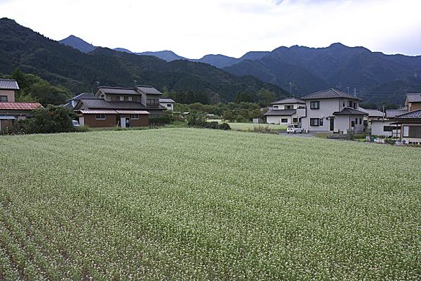 chichibu2_1120.jpg