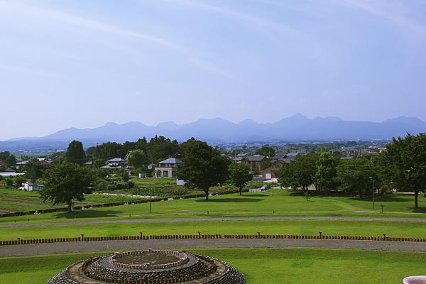 himawari_5614.jpg