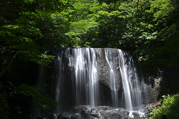 tatuzawa_5083.jpg