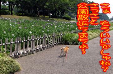 20070607-3.jpg
