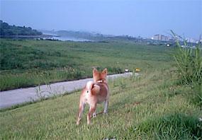 20070729-2.jpg