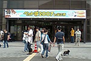 20071006-1.jpg