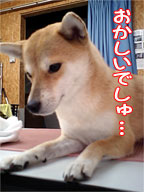 20071101-2.jpg