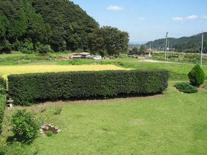 ikegake-1.jpg