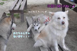 04.01愛ハス3